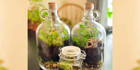 Build A Sustainable Life in a Bottle,  Terrarium! tickets