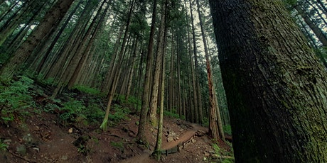 Trail Day on Dempsey tickets