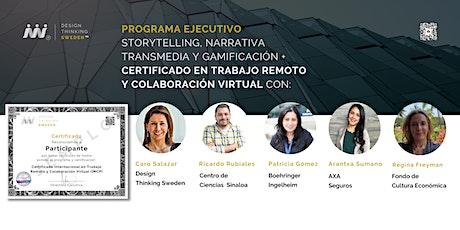 Programa: Storytelling, Narrativa Transmedia y Gamificación. entradas