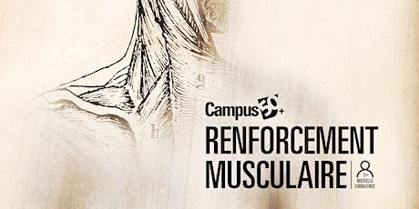 Renforcement musculaire billets