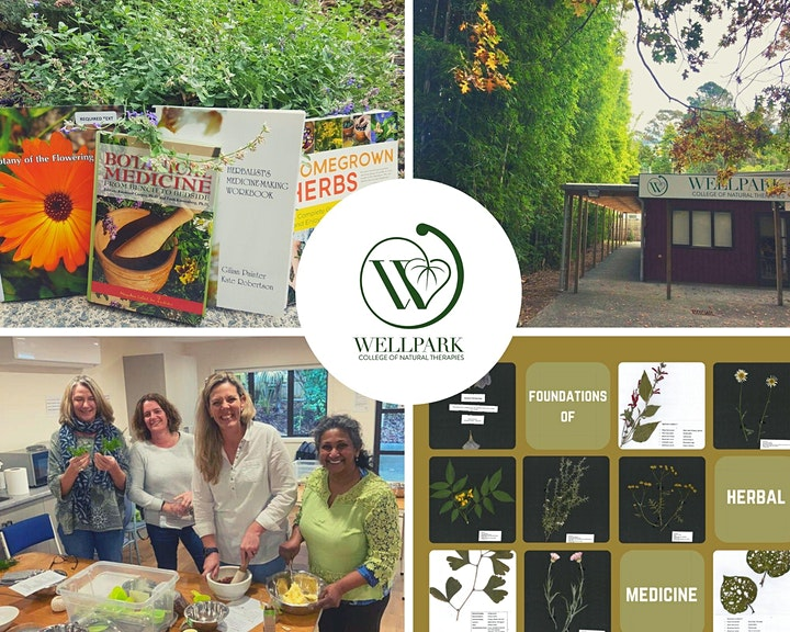 Enrolment 2022 Webinar ~ Wellpark College of Natural Therapies image
