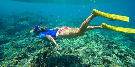 Come and Try Mid- Week Snorkelling - Women Only tickets