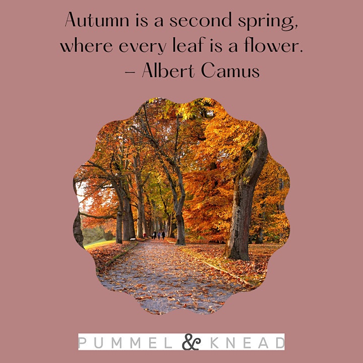 Autumn Wellbeing Session image