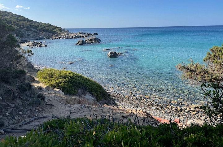 Immagine Visita guidata nella spiaggia di Porto Sa Ruxi - Progetto I CARE