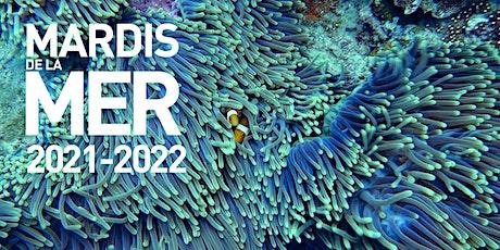 Les Mardis de Mer édition 2021/2022 billets