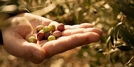 Olivenölseminar Tickets