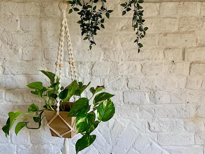 Mindful Macramé Plant Hanger Workshop image