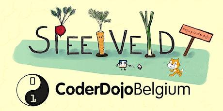 Pop up CoderDojo Brugge  - 14/8/2021 tickets
