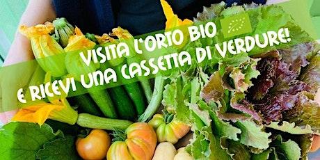 Visita l'orto bio e ricevi una cassetta di verdure! biglietti