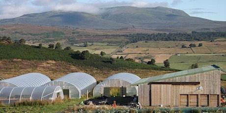 Direct & short supply chain marketing for growers - Scotland biglietti