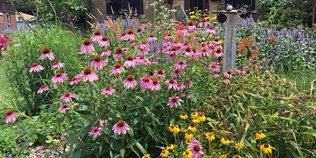Tricks and Tips for A Weed, Disease and Pest Free Garden tickets