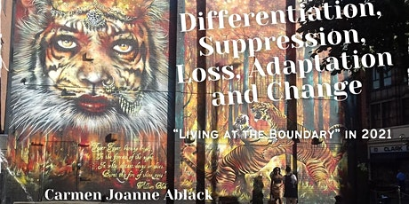 Differentiation, Suppression, Loss, Adaptation and Change tickets