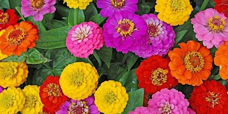 Flower Arranging tickets