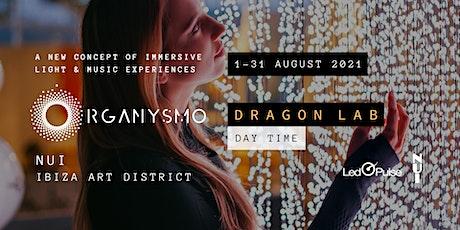 Dragon Lab | ORGANYSMO | NUI Ibiza | Day tickets