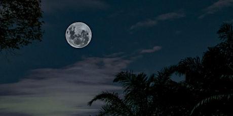 Autumn Equinox: Full Moon  Sound & Social at 1 Hotel South Beach tickets