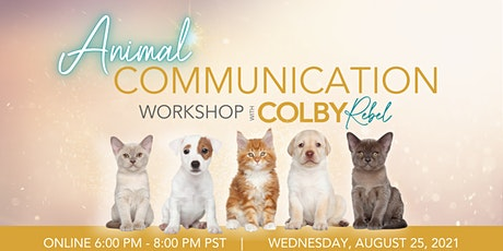 Beginner's Animal Communication with Colby Rebel tickets