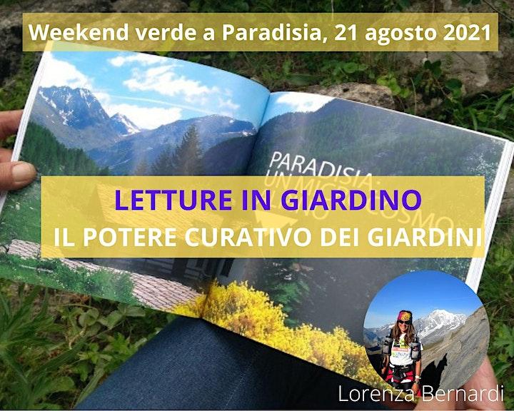 Immagine LETTURE IN GIARDINO