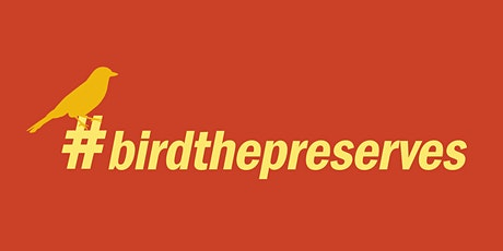 Be a Better Birder: Intro to Bird ID tickets