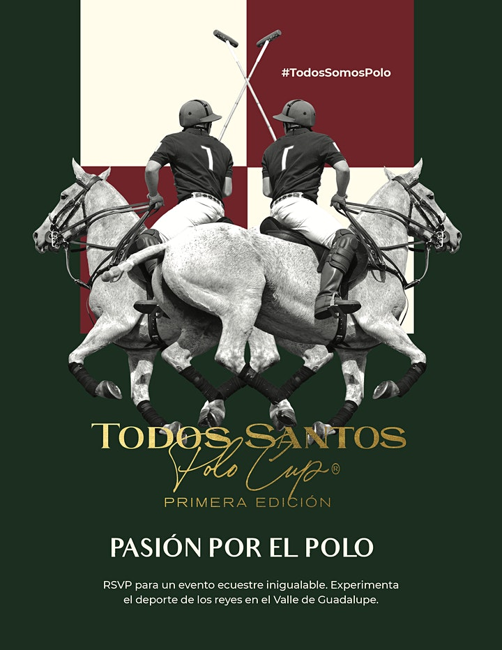 Todos Santos Polo Cup image