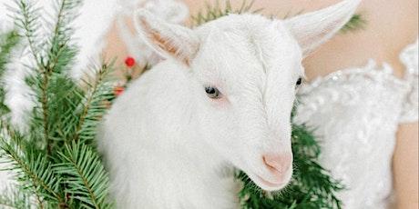 Baetje Farms Holiday Brunch tickets