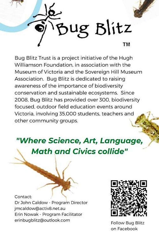 Nature Kids  - Bug Blitz image