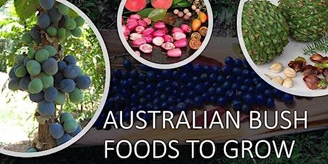 Australian Bush Foods to Grow in Your Garden - Part 1 tickets