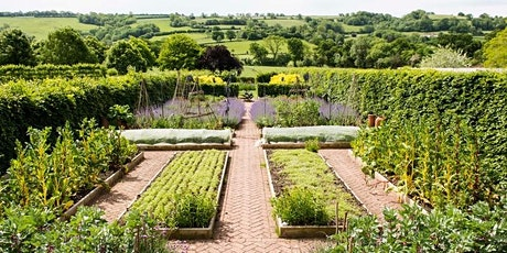 Royal Osteoporosis Society Summer Garden Party at Yeo Valley Organic Garden tickets