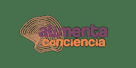 Consejo de jóvenes activistas  Segovia entradas