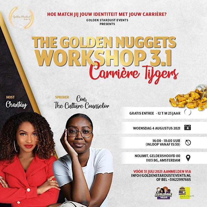 Afbeelding van The Golden Nuggets Workshop 3.1: Carrière Tijgers