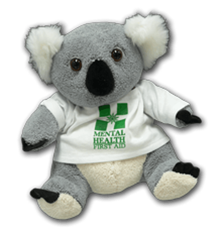 2-day Mental Health First Aid course, accredited by MHFA England image