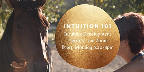 Intuition 101 - Term 3 via Zoo tickets