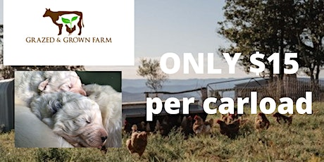 Family Friendly Farm Tour Lots of farm animals and cute maremma puppies tickets