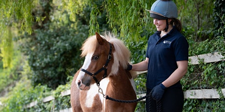 Open Day at the Mare and Foal Sanctuary - Honeysuckle tickets