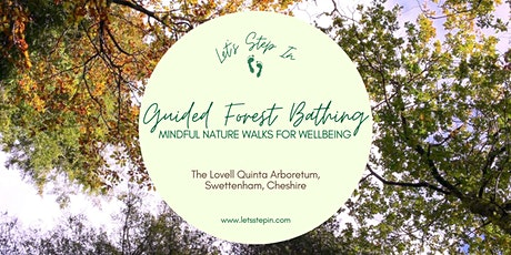Evening Guided Forest Bathing Session tickets