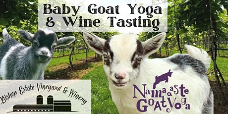 Baby Goat Yoga & Wine Tasting: Bishop Estate Vineyard and Winery tickets