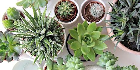Plants Don't Succ! A Succulent Garden Workshop tickets