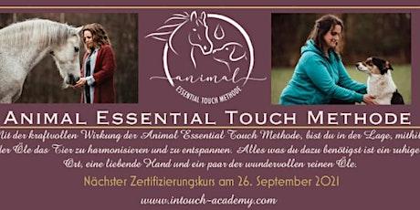Animal Essential Touch Methode - Zertifizierungskurs Pferd Tickets