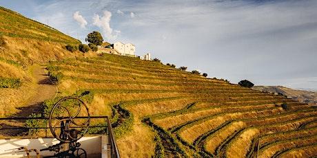 Quinta da Pedra Alta | Douro | Portuguese Virtual Wine Tasting bilhetes
