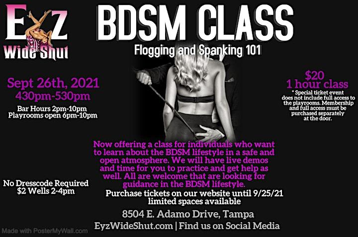 BDSM - Flogging and Spanking 101 image