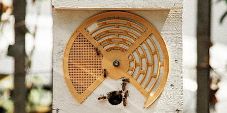 Farmhouse Family Day; Beautiful Bees tickets