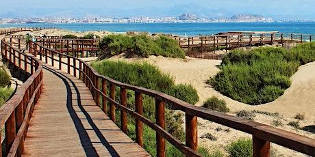 MAS INFO 636116531 Viaje a las Playas de ALICANTE ELCHE Y SANTA POLA entradas