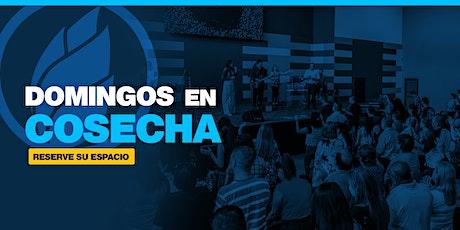 #DomingoEnCosecha   10:00AM   25  julio 2021 boletos