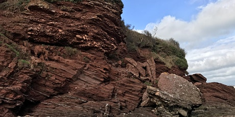 Geology of Goodrington and Saltern Cove (Low Tide) tickets