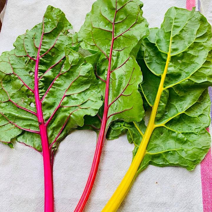 Immagine Visita l'orto bio e ricevi una cassetta di verdure!