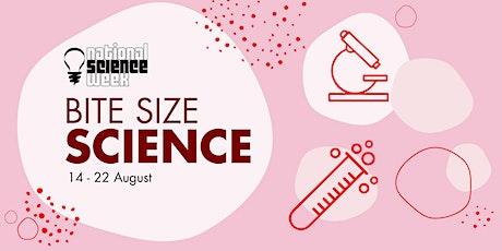 IHMRI's Bite Size Science Webinars 2021 tickets