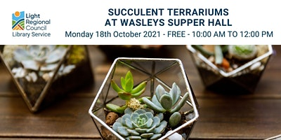 Succulent Terrariums @ Wasleys Supper Hall