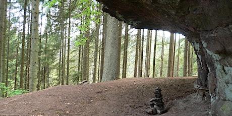 Single-Wanderung Wasser-, Wald- und Wiesenpfad Calw (30-50) Tickets