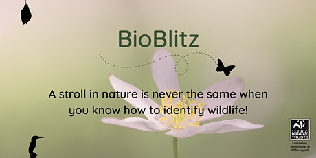 BioBlitz at Philips Park tickets