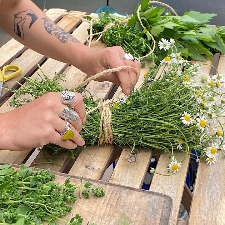 Composez vos tisanes au cœur de notre ferme urbaine image