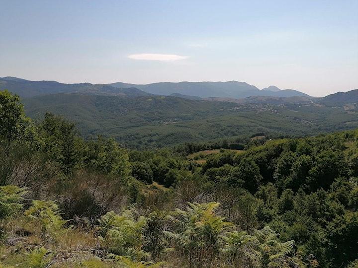 Immagine NaturArte Trekking   Pergola di Brienza località Lago   PNAL  Brienza